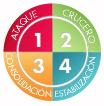 cuatro fases